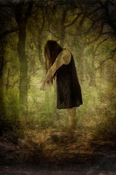Hidding in the woods