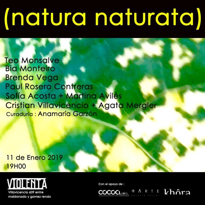 natura naturata